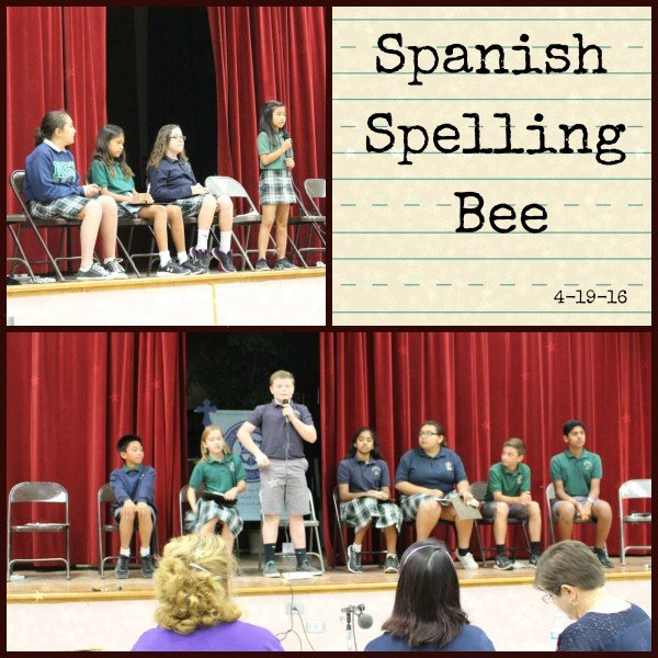 Spanish Spelling Bee 1