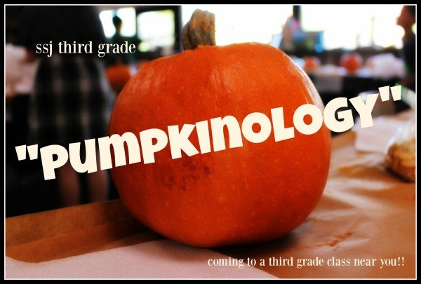 pumpkinology
